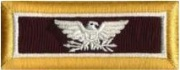 U.S. Colonel - Medical Corps